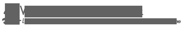vfn header logo grey